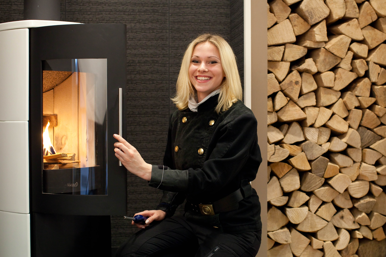 brennholz bundesverband des schornsteinfegerhandwerks. Black Bedroom Furniture Sets. Home Design Ideas
